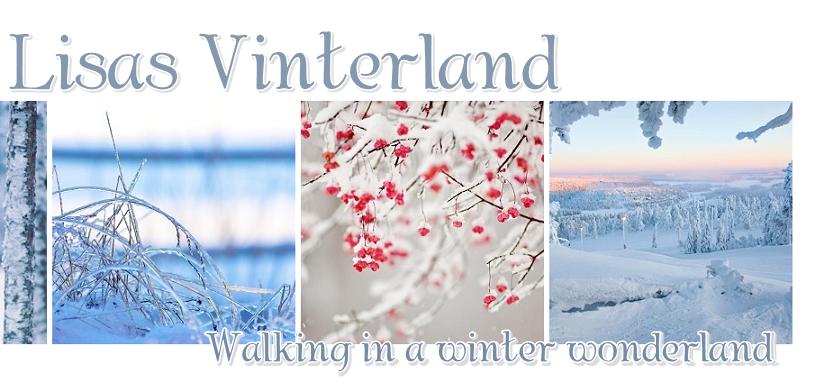 lisas-vinterland-blogg